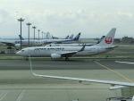 ヒロリンさんが、羽田空港で撮影した日本航空 737-846の航空フォト(写真)