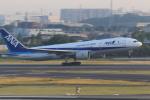 rokko2000さんが、伊丹空港で撮影した全日空 777-281/ERの航空フォト(写真)