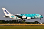 SKY TEAM B-6053さんが、成田国際空港で撮影した全日空 A380-841の航空フォト(写真)