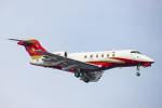 SGR RT 改さんが、羽田空港で撮影したHanhwa Airlines BD-100 Challenger 300/350の航空フォト(写真)
