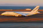 sky01さんが、中部国際空港で撮影したアントノフ・エアラインズ An-124-100 Ruslanの航空フォト(写真)