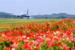 LOTUSさんが、高松空港で撮影した全日空 767-381/ERの航空フォト(写真)