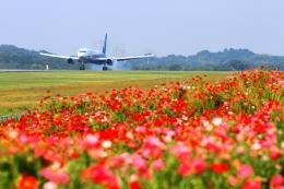 LOTUSさんが、高松空港で撮影した全日空 767-381/ERの航空フォト(飛行機 写真・画像)