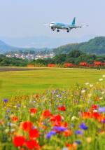 LOTUSさんが、高松空港で撮影したエアソウル A321-231の航空フォト(写真)