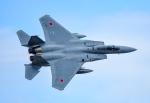czuleさんが、茨城空港で撮影した航空自衛隊 F-15J Eagleの航空フォト(写真)