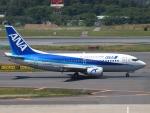 FT51ANさんが、成田国際空港で撮影したANAウイングス 737-54Kの航空フォト(写真)