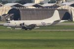 キイロイトリさんが、嘉手納飛行場で撮影したアメリカ海軍 P-3C BMUPの航空フォト(写真)
