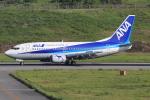 キイロイトリさんが、新石垣空港で撮影したANAウイングス 737-54Kの航空フォト(写真)