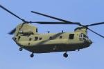 とらとらさんが、厚木飛行場で撮影したアメリカ陸軍 CH-47Fの航空フォト(写真)