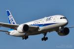 kina309さんが、成田国際空港で撮影した全日空 787-8 Dreamlinerの航空フォト(写真)