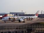 PW4090さんが、関西国際空港で撮影した日本航空 787-9の航空フォト(写真)