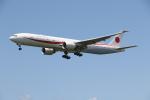 ゴンタさんが、小松空港で撮影した航空自衛隊 777-3SB/ERの航空フォト(写真)