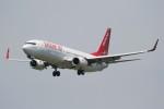 ドラパチさんが、成田国際空港で撮影したイースター航空 737-86Jの航空フォト(写真)
