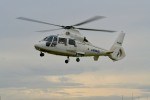 kamerajiijiさんが、東京ヘリポートで撮影したエアバス・ヘリコプターズ・ジャパン AS365N2 Dauphin 2の航空フォト(写真)