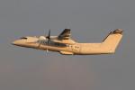 キイロイトリさんが、嘉手納飛行場で撮影したユタ銀行 DHC-8-315B Dash 8の航空フォト(飛行機 写真・画像)