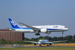 NH642さんが、成田国際空港で撮影した全日空 787-8 Dreamlinerの航空フォト(写真)