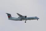 しかばねさんが、シアトル タコマ国際空港で撮影したジャズ・エア DHC-8-402Q Dash 8の航空フォト(写真)