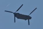 NFファンさんが、厚木飛行場で撮影したアメリカ陸軍 CH-47 Chinookの航空フォト(写真)