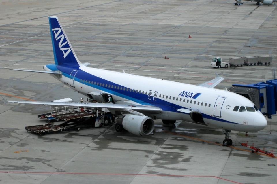Hiro-hiroさんの全日空 Airbus A320 (JA8383) 航空フォト