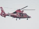 ハヤブサ2号さんが、福岡空港で撮影した福岡市消防局消防航空隊 AS365N3 Dauphin 2の航空フォト(写真)