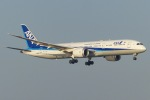 Snow manさんが、羽田空港で撮影した全日空 787-9の航空フォト(写真)