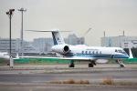 Yukipaさんが、羽田空港で撮影した海上保安庁 G-V Gulfstream Vの航空フォト(写真)