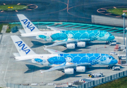 Cygnus00さんが、成田国際空港で撮影した全日空 A380-841の航空フォト(写真)