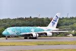 subarist 1977さんが、成田国際空港で撮影した全日空 A380-841の航空フォト(写真)