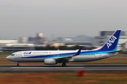 STAR TEAMさんが、伊丹空港で撮影した全日空 737-881の航空フォト(写真)