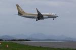 xxxxxzさんが、静岡空港で撮影した全日空 737-781の航空フォト(写真)