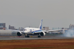 STAR TEAMさんが、伊丹空港で撮影した全日空 787-8 Dreamlinerの航空フォト(写真)