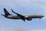 ★azusa★さんが、シンガポール・チャンギ国際空港で撮影した厦門航空 737-85Cの航空フォト(写真)