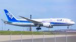 ケロリ/Keroriさんが、羽田空港で撮影した全日空 787-8 Dreamlinerの航空フォト(写真)