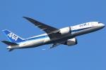 まえちんさんが、羽田空港で撮影した全日空 787-8 Dreamlinerの航空フォト(写真)