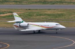 たまさんが、羽田空港で撮影したアルジー・エクスプレス Falcon 2000の航空フォト(飛行機 写真・画像)