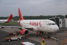 GAさんが、エルサルバドル国際空港で撮影したアビアンカ・ペルー A319-132の航空フォト(飛行機 写真・画像)