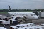 GAさんが、エルサルバドル国際空港で撮影したアビアンカ・エルサルバドル A320-214の航空フォト(写真)