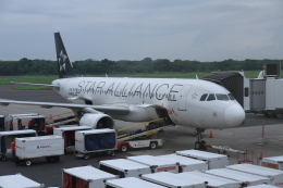 GAさんが、エルサルバドル国際空港で撮影したアビアンカ・エルサルバドル A320-214の航空フォト(飛行機 写真・画像)