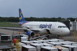 GAさんが、エルサルバドル国際空港で撮影したスピリット航空 A320-232の航空フォト(飛行機 写真・画像)