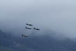 GAさんが、エルサルバドル国際空港で撮影したエルサルバドル空軍の航空フォト(飛行機 写真・画像)