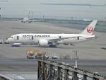 チャレンジャーさんが、羽田空港で撮影した日本航空 787-8 Dreamlinerの航空フォト(写真)
