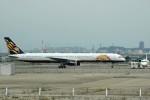 髪刈虫(かみきりむし)さんが、名古屋飛行場で撮影したATA航空 757-33Nの航空フォト(写真)