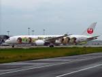 た~きゅんさんが、関西国際空港で撮影した日本航空 787-9の航空フォト(写真)