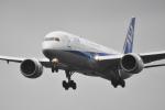 beimax55さんが、成田国際空港で撮影した全日空 787-9の航空フォト(写真)