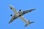 Dojalanaさんが、函館空港で撮影したタイガーエア台湾 A320-232の航空フォト(写真)