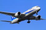 武彩航空公司(むさいえあ)さんが、羽田空港で撮影した全日空 787-8 Dreamlinerの航空フォト(写真)
