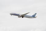 eagletさんが、羽田空港で撮影した全日空 787-9の航空フォト(写真)