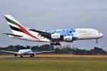 さくらの城南山。さんが、成田国際空港で撮影したエミレーツ航空 A380-861の航空フォト(写真)