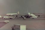 ヒロリンさんが、羽田空港で撮影した東亜国内航空 A300B2の航空フォト(写真)