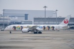 JG太郎さんが、関西国際空港で撮影した日本航空 787-9の航空フォト(写真)